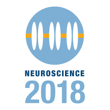 Brain Mapping Lab attends SfN 2018